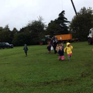 Little Houghton Day Nursery tree felling 6